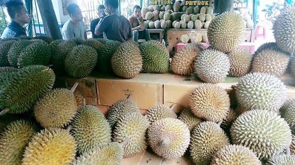 Taman Makan Durian, Kalibata