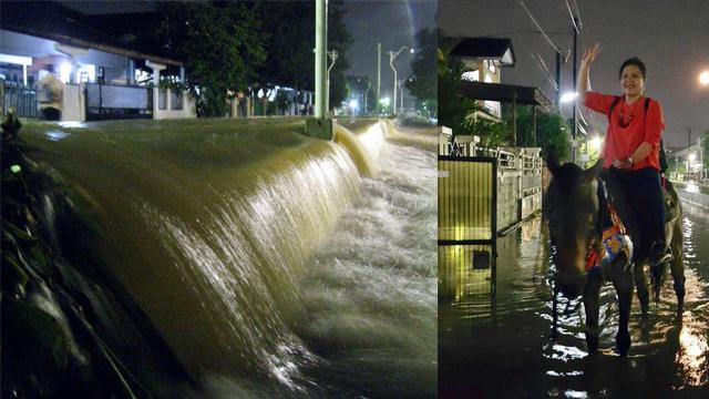 Banjir dan Kuda di Taman Duta
