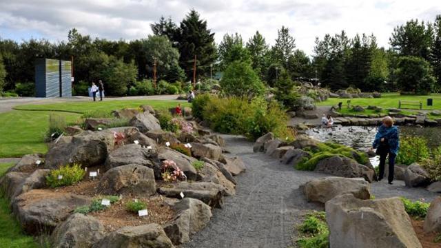 Taman Sepi di Reykjavik