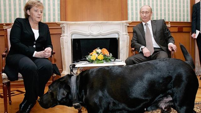 """Diplomasi Anjing Labrador"" Putin kepada Merkel"