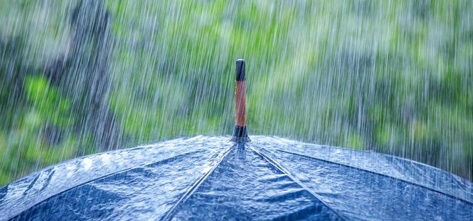 Hujan Datang, Sejumlah Penyakit Nimbrung