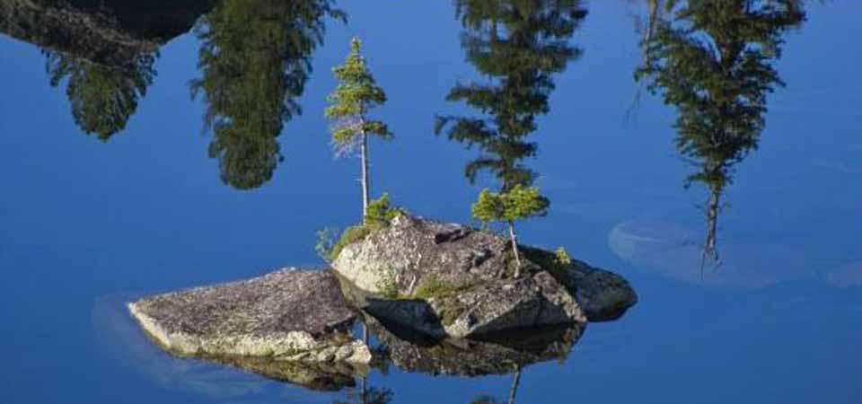 Pulau Mungil di Krasnoyarsk Tetap Cantik Meski Dihantam Empat Musim