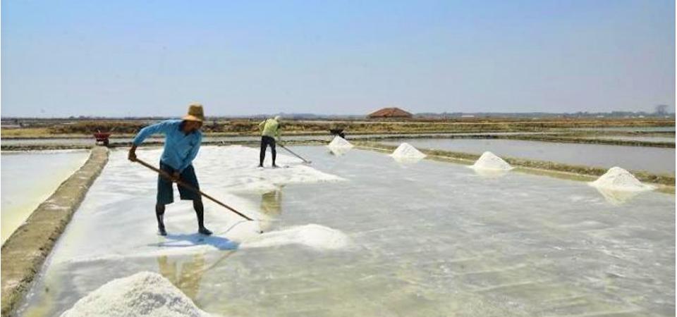 Industri Komitmen Serap Garam Petani 1,43 Juta Ton