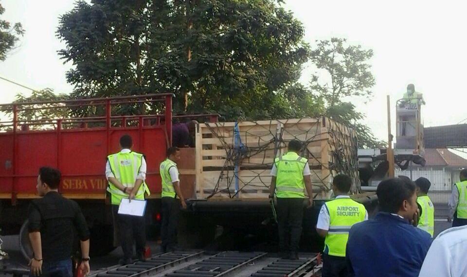 JAS & AP I Sinergi Tangani Ekspor 60 Ribu Ekor Domba Ke Malaysia