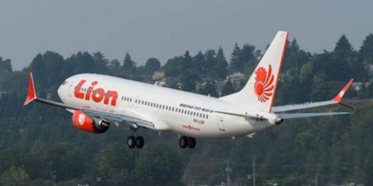 Ilustrasi pesawat Lion Air–foto istimewa