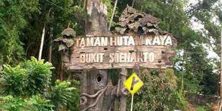 Pertambangan Batu Bara Ilegal di Tahura, Ketua DPR: Usut dan Tindak Tegas!