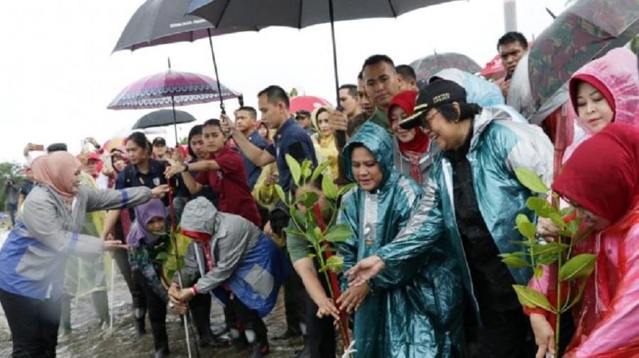 Demi Hutan Rehabilitasi Mangrove Ibu Iriana Rela Kehujanan