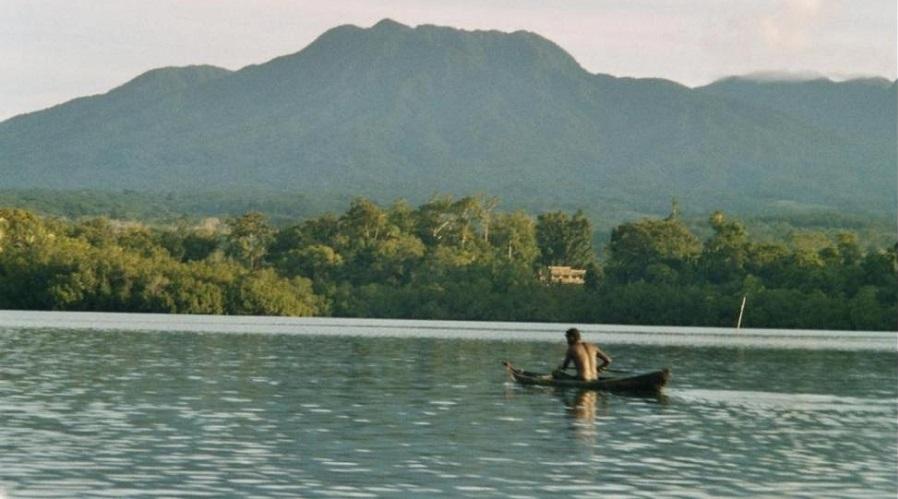 Cabang-cabang Baru Keluarga Denisovan Ditemukan di Indonesia