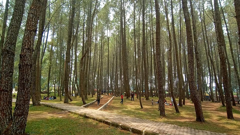 Kemah Pers Indonesia Bakal Digelar di Taman Sipinsur