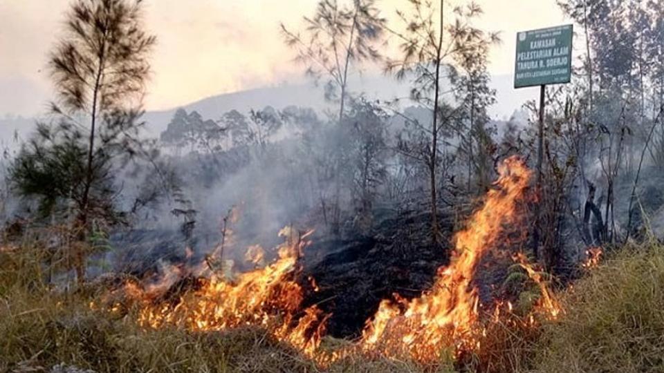 Kebakaran Gunung Arjuno, Pemprov Jatim Koordinasi dengan BNPB Lakukan Water Bombing