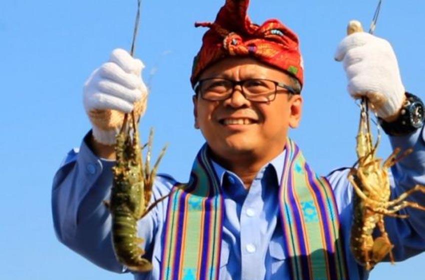 Akhirnya, Menteri KP Setuju Larangan Ekspor Benih Lobster Tetap Diberlakukan