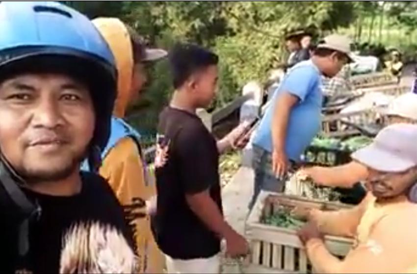 Bagi-bagi dan Buang-buang Sayur di Malang