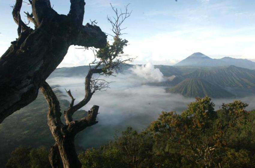 Anda Sudah Boleh Naik ke Gunung Bromo