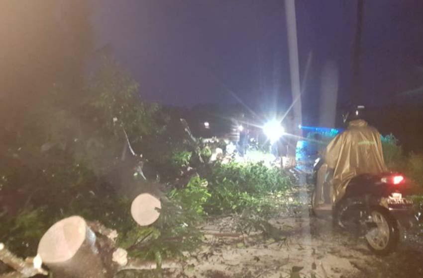 Angin kencang terjang empat desa di Aceh Tenggara, Minggu (27/9)