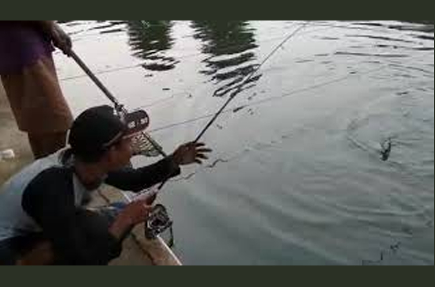Strike Ikan Babon, Amboy Rasanya…