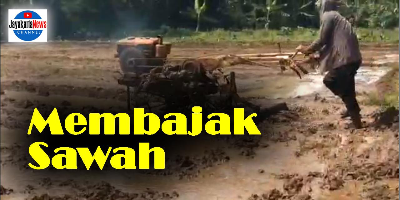 Traktor Pembajak Sawah
