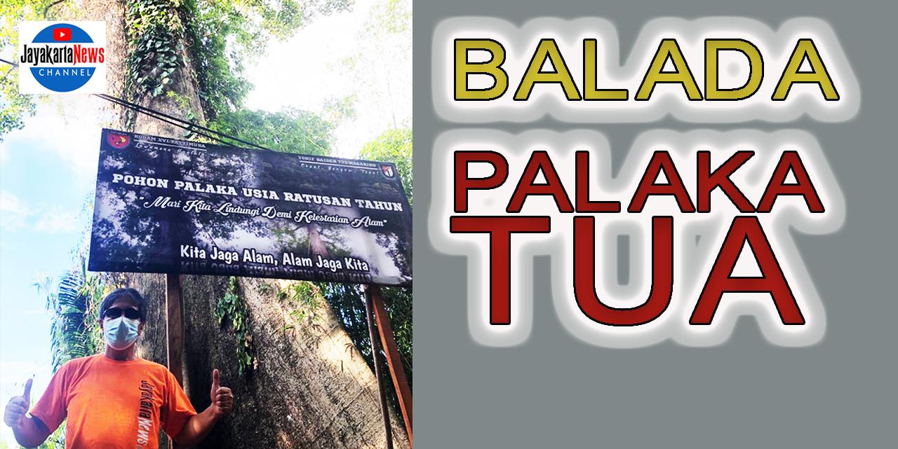 Balada Palaka Tua