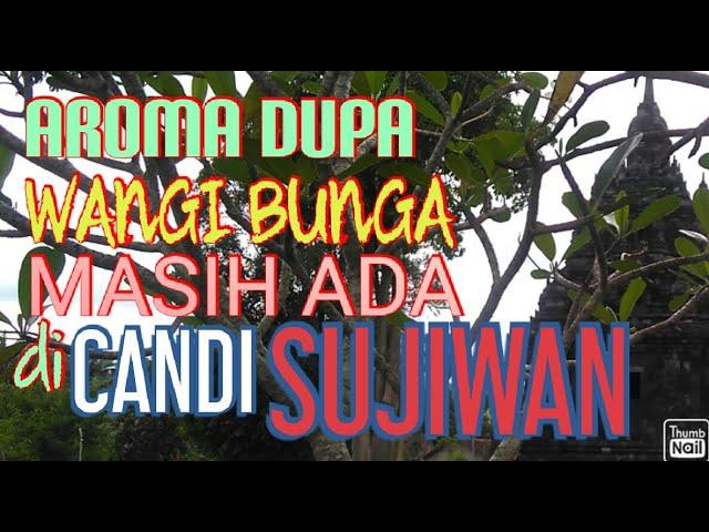Ranah Angker Candi Sojiwan
