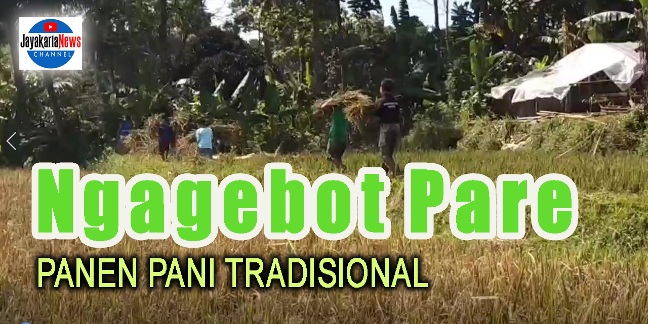 Ngagebot Pare, Cara Panen Padi Tradisional