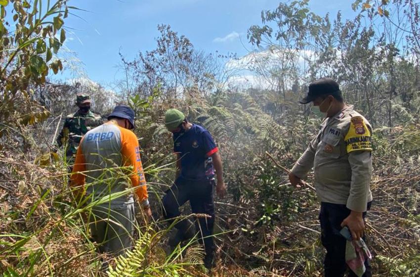 Refleksi Bencana Alam Sepanjang Agustus 2021: BNPB Catat 155 Kejadian