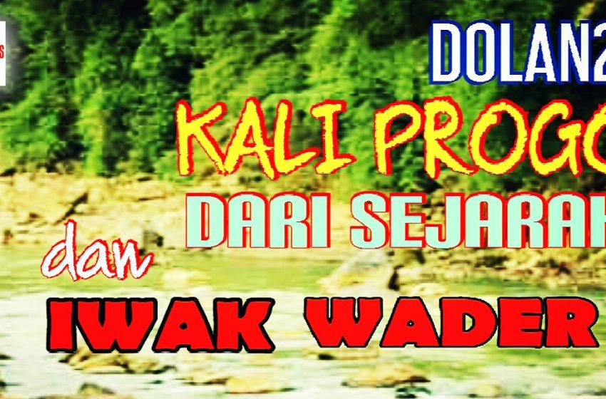 Kuliner Ikan Wader di Pinggir Kali Progo