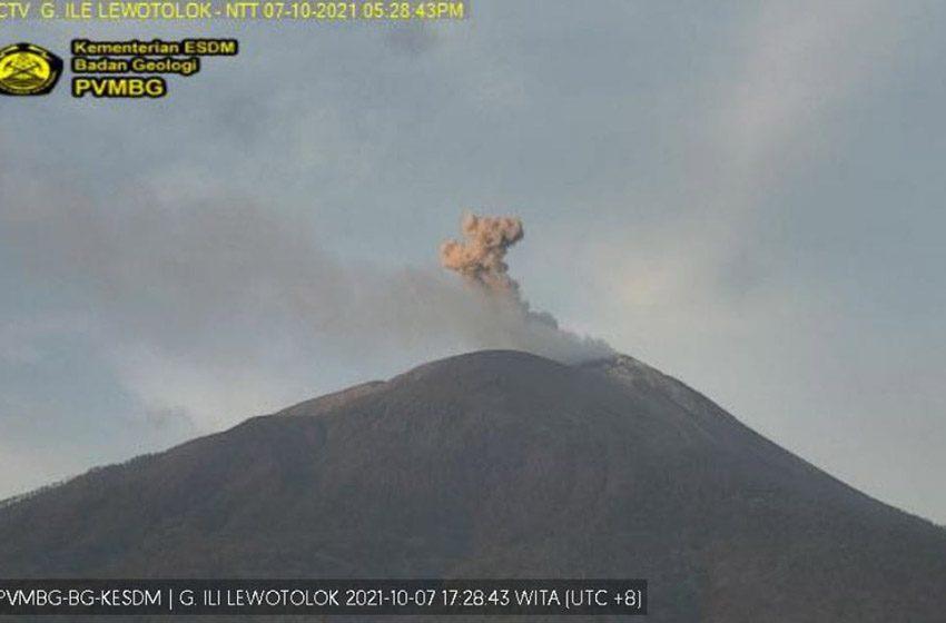 Aktivitas Vulkanik Gunung Ile Lewotolok Meningkat,  Sehari Bisa 26 Kali Erupsi